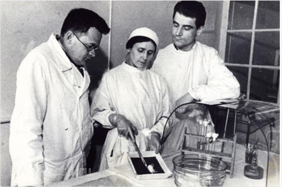 Как советский бактериолог победил клещевой энцефалит и организовал производство вакцины