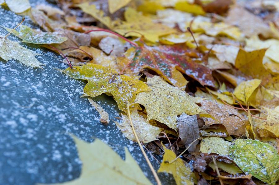 В Самарской области ожидается мокрый снег